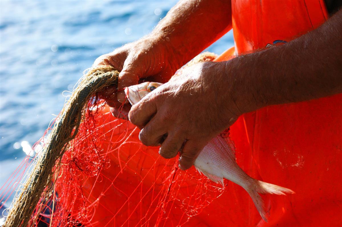 casecostaiblea-pescaturismo